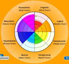Multiple Intelligences2