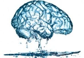 water-brain-349x240