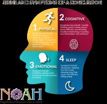 NOAH_Human_Head.png
